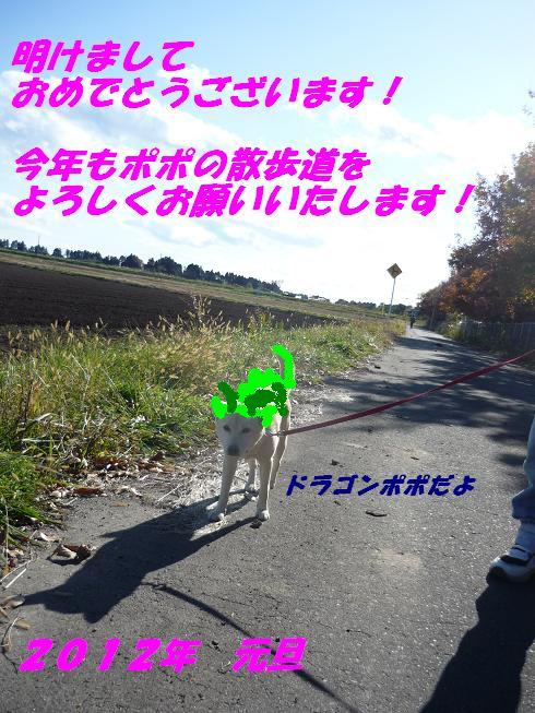 e0139167_116576.jpg