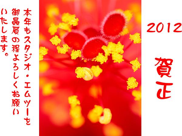 2012年 謹賀新年_a0002672_118859.jpg