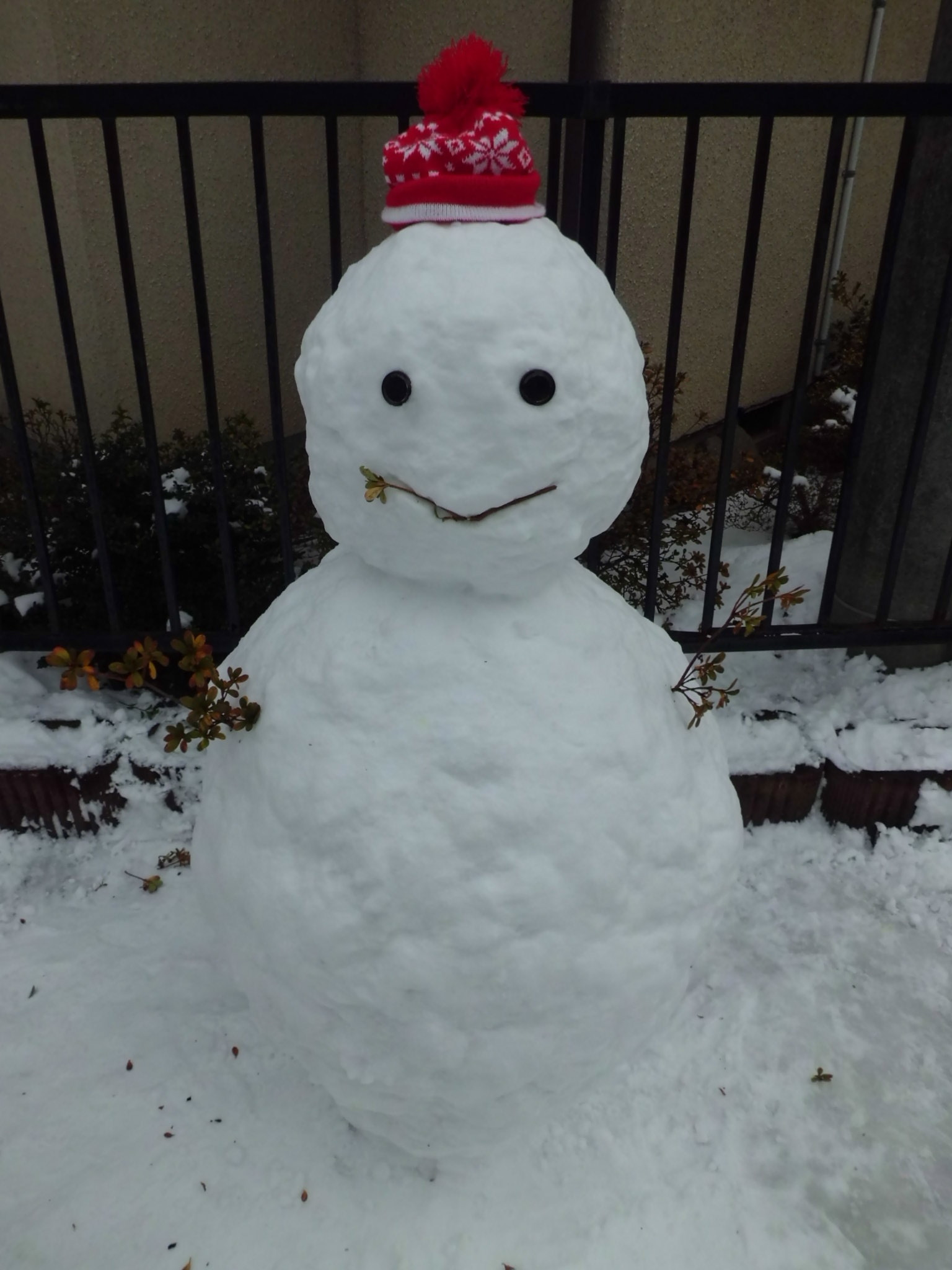 なかなかの雪だるま_a0025572_23571088.jpg