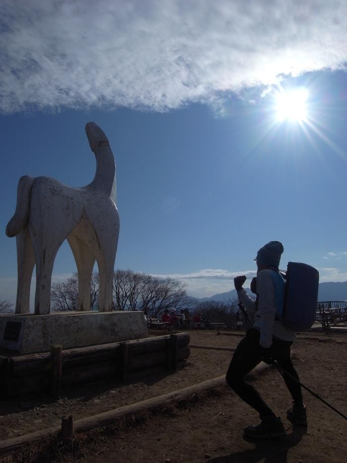 2011.12.31 大晦日笹尾根デイハイク(上川乗-浅間峠-陣馬山-高尾山口)_b0219778_18212940.jpg