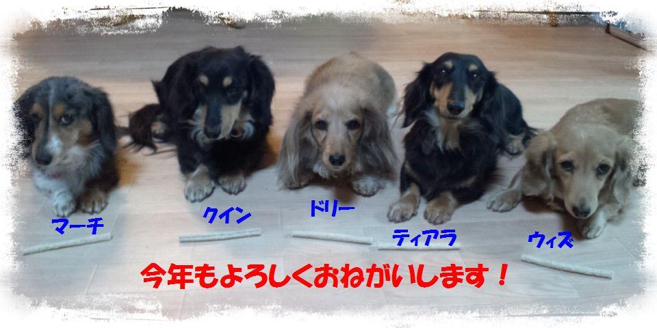 b0059087_1154848.jpg