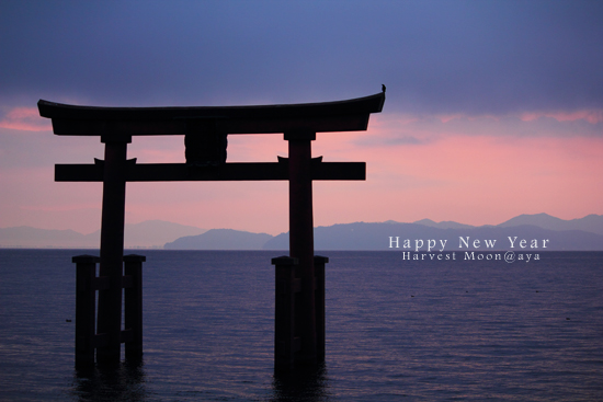 NEW YEAR_b0208495_0353337.jpg