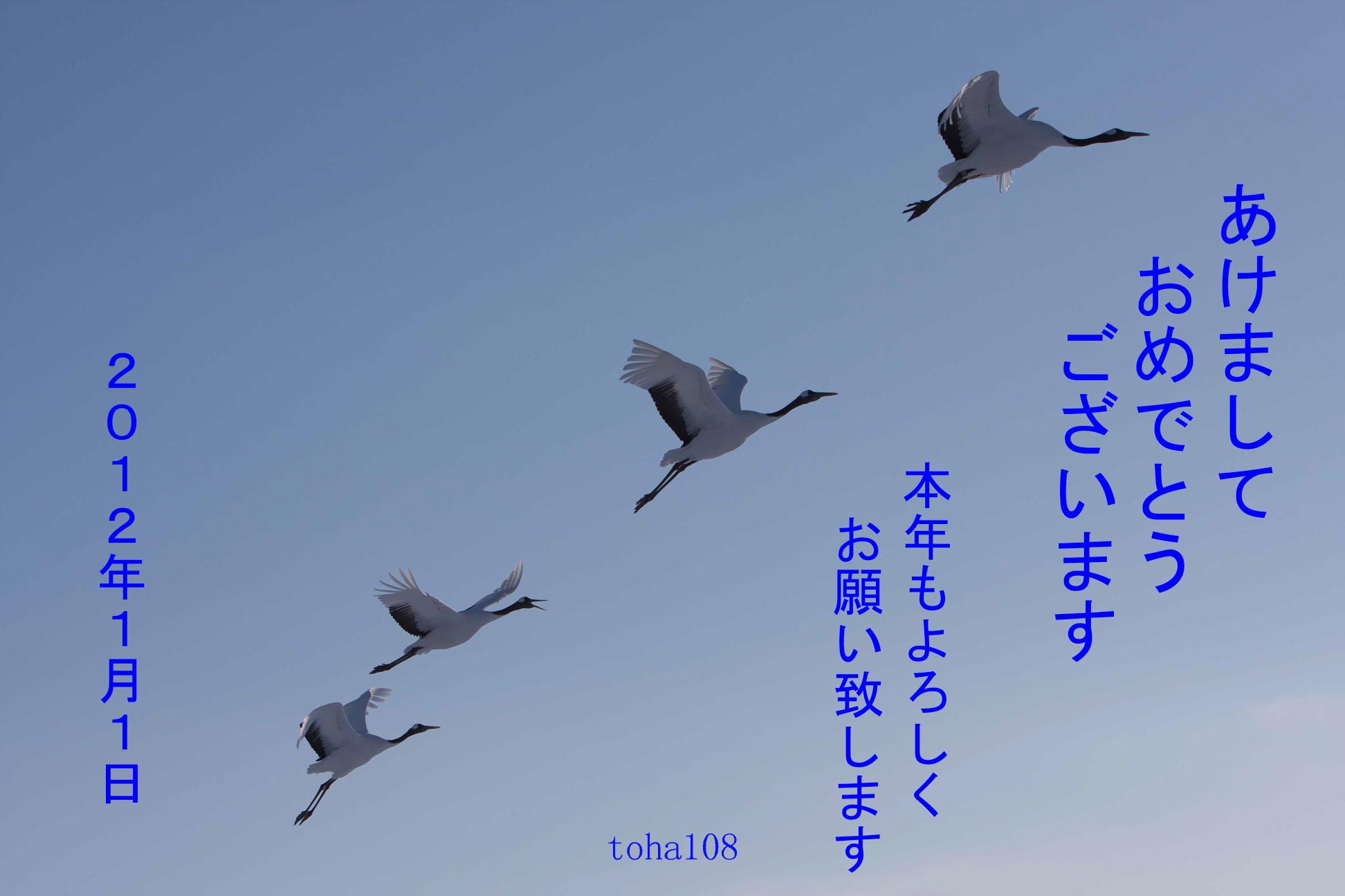 f0010298_16578.jpg