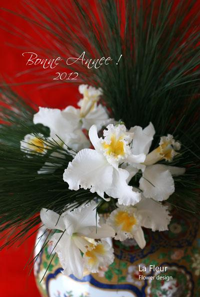 Bonne Année! 2012_f0127281_1636114.jpg