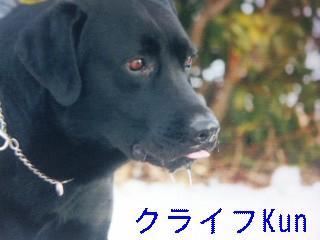 1月3日のお友達_d0148408_1854848.jpg