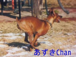 1月3日のお友達_d0148408_1854893.jpg