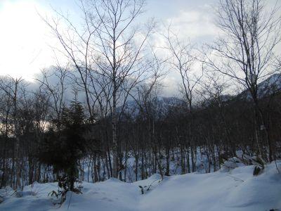 1月1日の冬_a0162646_20312357.jpg