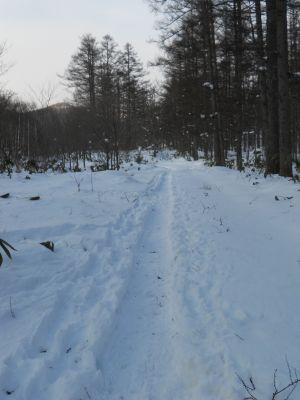 1月1日の冬_a0162646_20331454.jpg