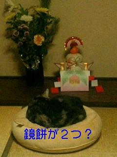 b0171065_342139.jpg