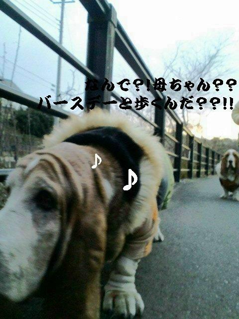 b0234697_7501394.jpg