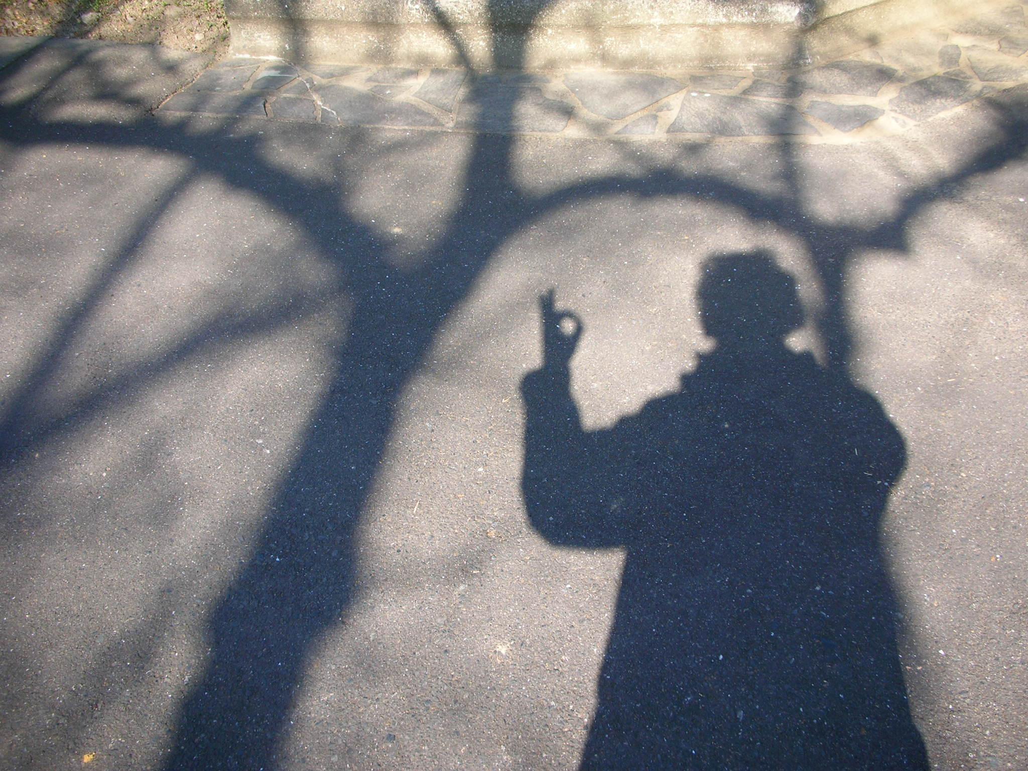 2012  新年_f0146802_2284183.jpg