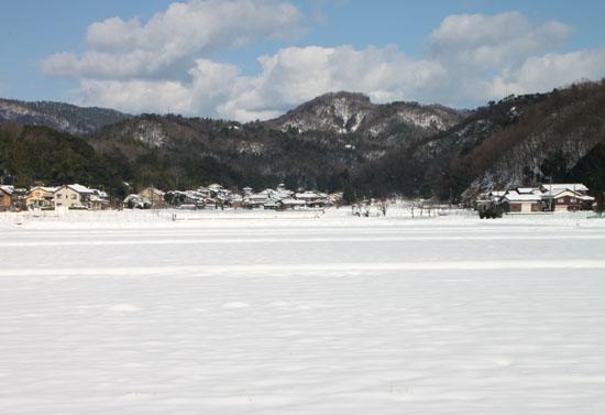 コウノトリ公園_e0048413_22252890.jpg