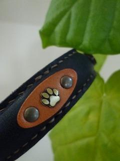 dog goods   オーダーメイドのカラー&リード♪_a0165160_7413553.jpg