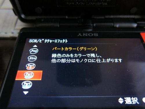 a0002177_212368.jpg