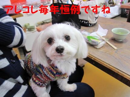 b0193480_1643711.jpg