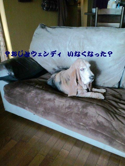 b0234697_7143760.jpg