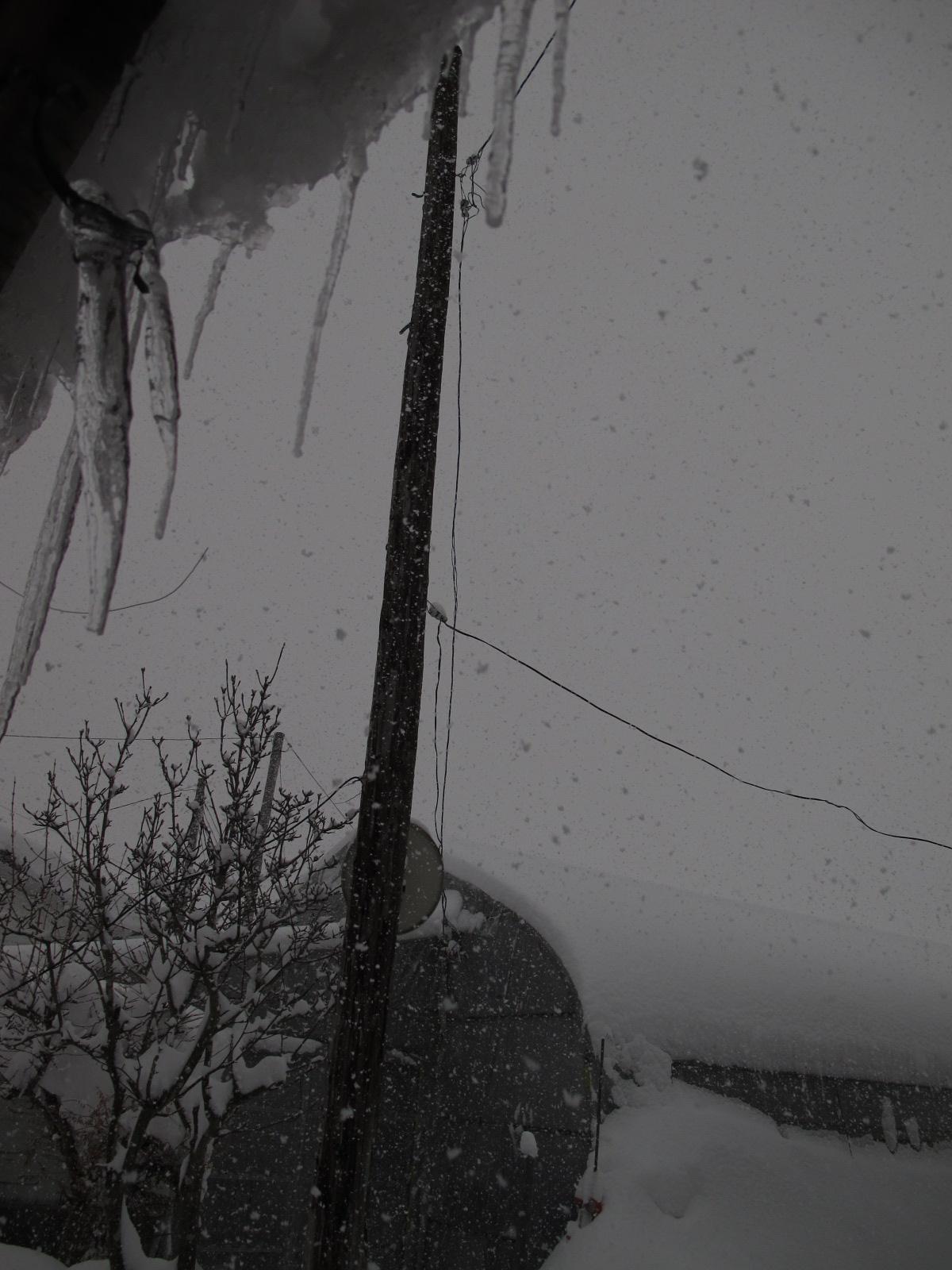 雪が・・・_b0152504_1692339.jpg