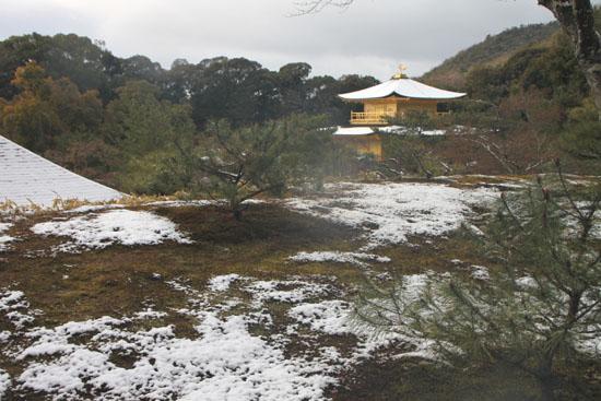 雪の金閣寺_e0048413_2145257.jpg