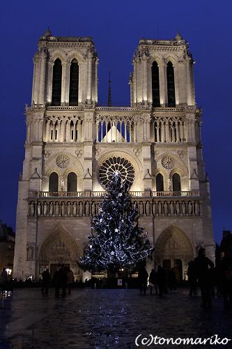 ノートルダム寺院のクリスマスツリー_c0024345_7223687.jpg