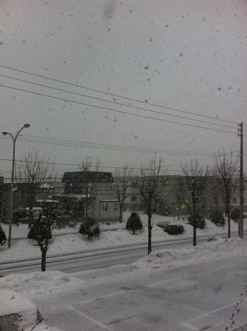 雪_b0232958_21575098.jpg