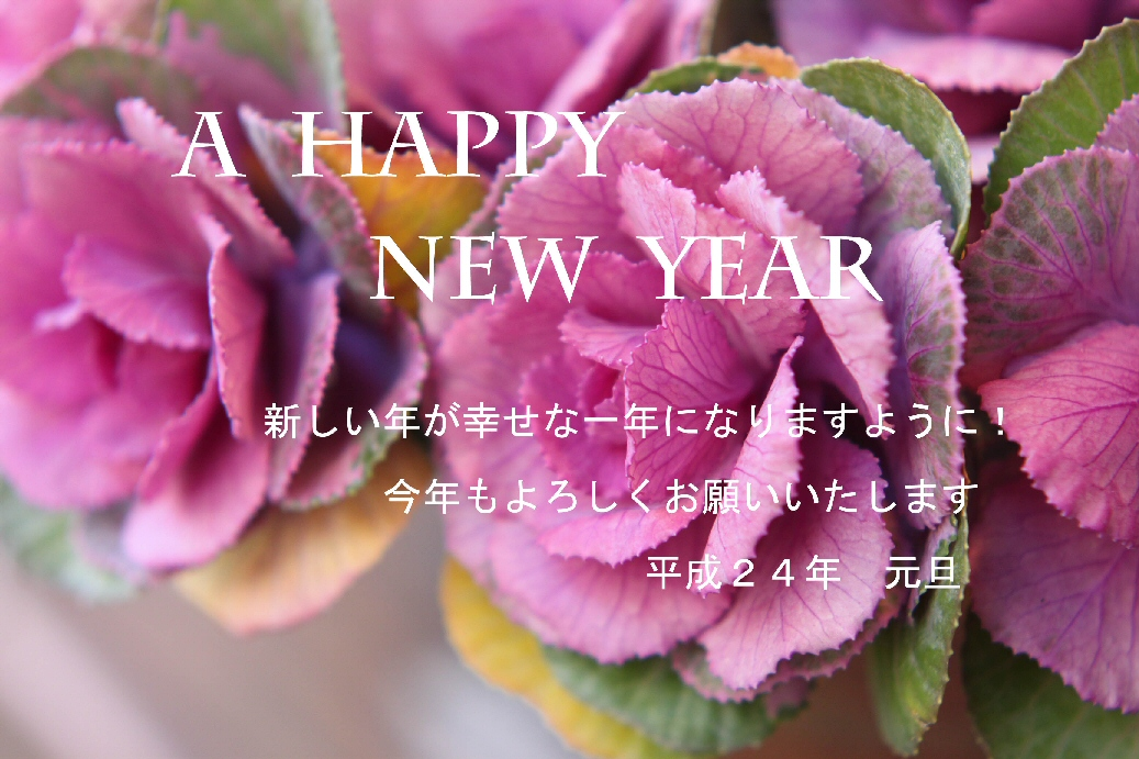 新年のご挨拶_f0158364_18251497.jpg