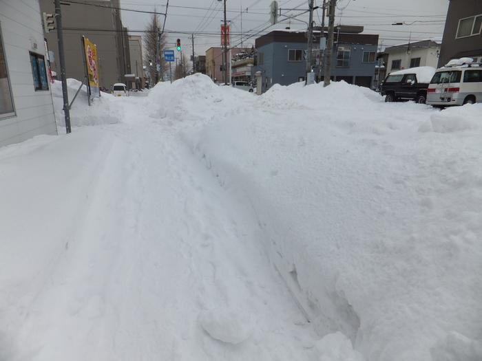 クララと雪の散歩道_c0226202_1652857.jpg