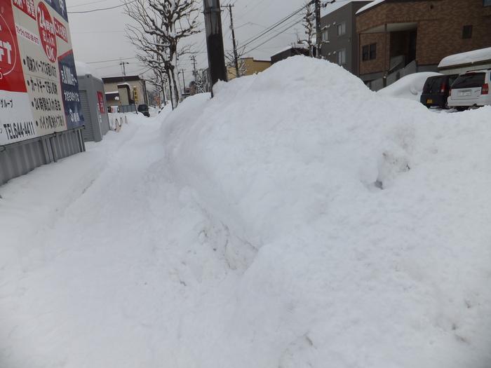 クララと雪の散歩道_c0226202_1663693.jpg