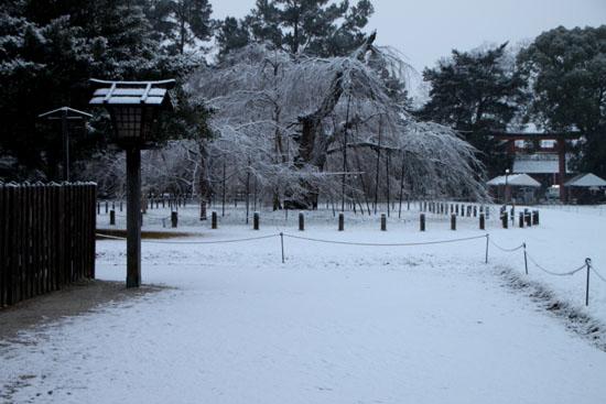 上賀茂神社 雪景色_e0048413_14585084.jpg