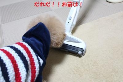 b0197418_19475441.jpg