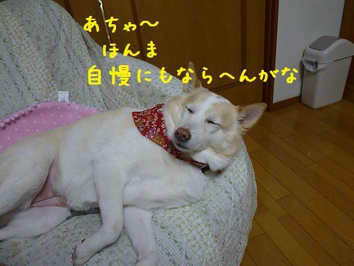 b0138430_1301591.jpg