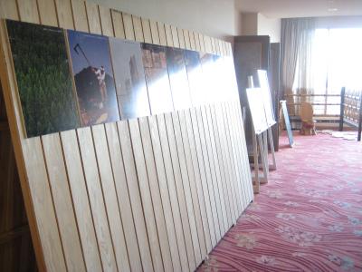 日南市内のホテルを飫肥杉化_f0138874_1672650.jpg