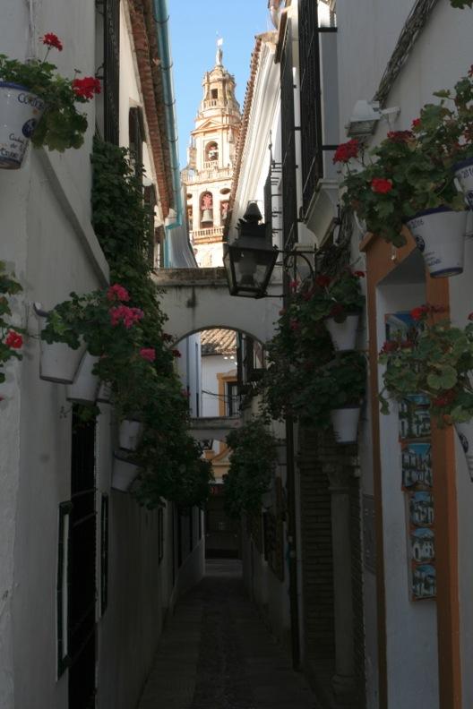 スペイン色々7_コルドバ_d0133581_2014035.jpg