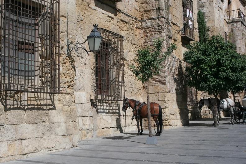 スペイン色々7_コルドバ_d0133581_2021438.jpg