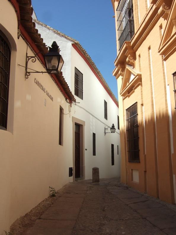 スペイン色々7_コルドバ_d0133581_20234090.jpg