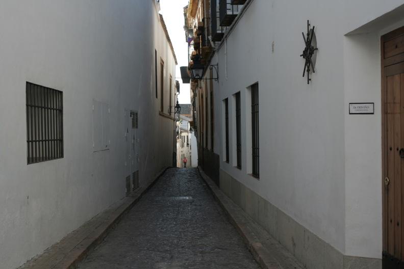 スペイン色々7_コルドバ_d0133581_2093132.jpg