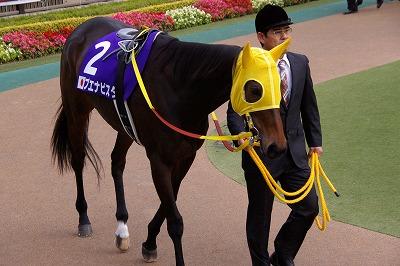 2011年度JRA賞発表、年度代表馬はオルフェーヴル_b0015386_21563768.jpg
