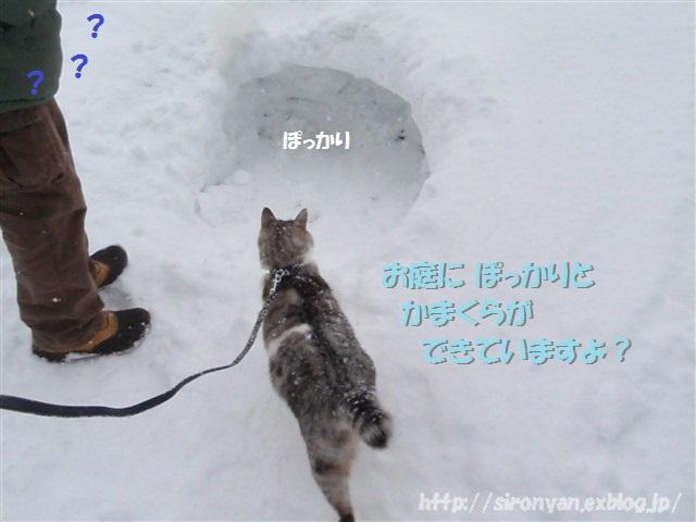 a0159490_14545023.jpg