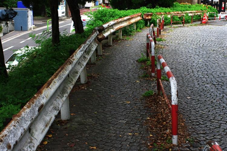東京大学の風景_b0053019_21434976.jpg