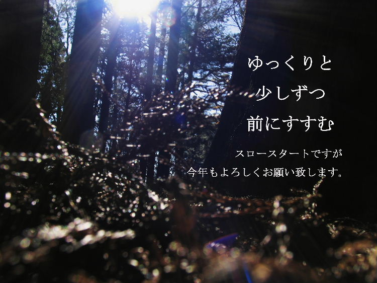 b0031725_1254496.jpg