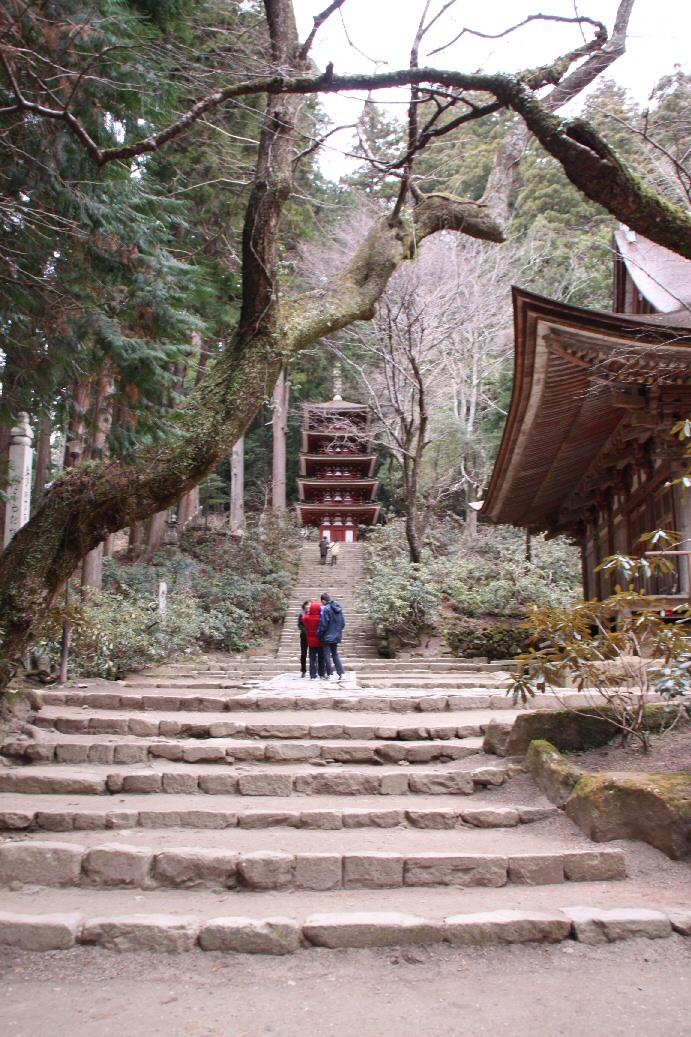 京都 2日目_f0158364_16332138.jpg