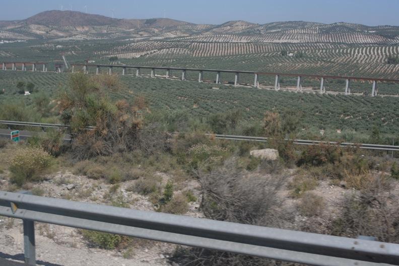 スペイン色々8_グラナダ_d0133581_20171048.jpg