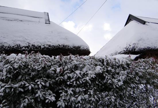 茅葺き民家、冬景色♪_a0136293_15301232.jpg