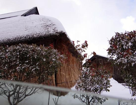 茅葺き民家、冬景色♪_a0136293_15325333.jpg