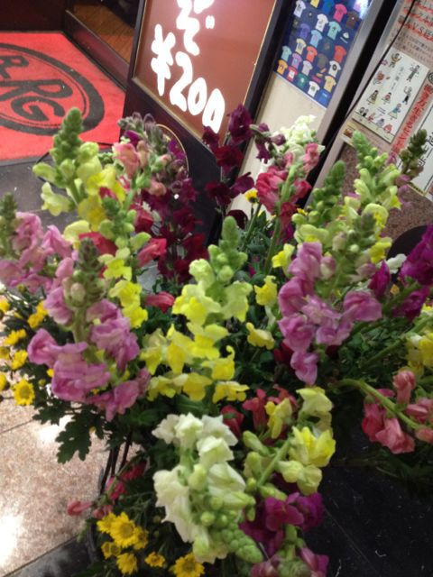 花とベルクのあいだで_c0069047_1952456.jpg