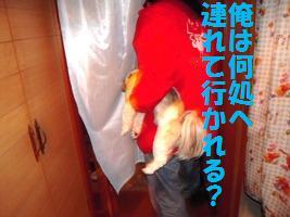 d0140668_9112680.jpg