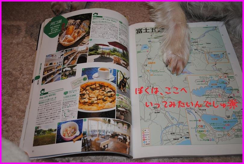 b0242873_1421746.jpg