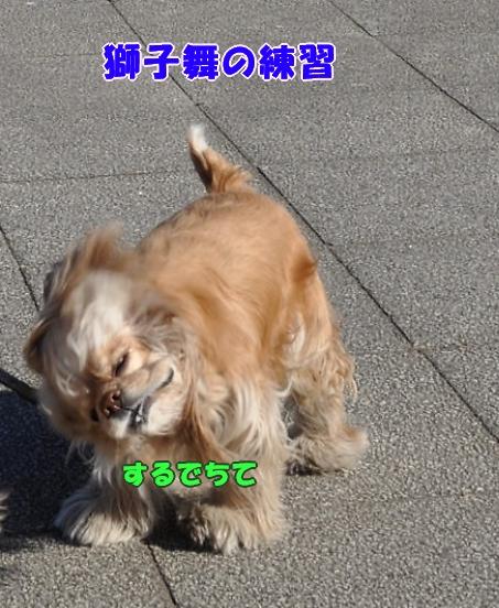 b0067012_23352489.jpg