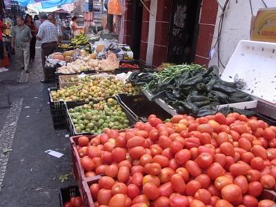 ++野菜リポートfromメキシコ++_e0140921_8515169.jpg