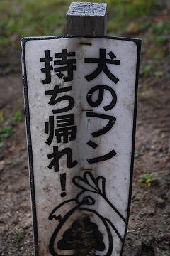 新年早々「うん」のつくお話_c0124100_23413485.jpg