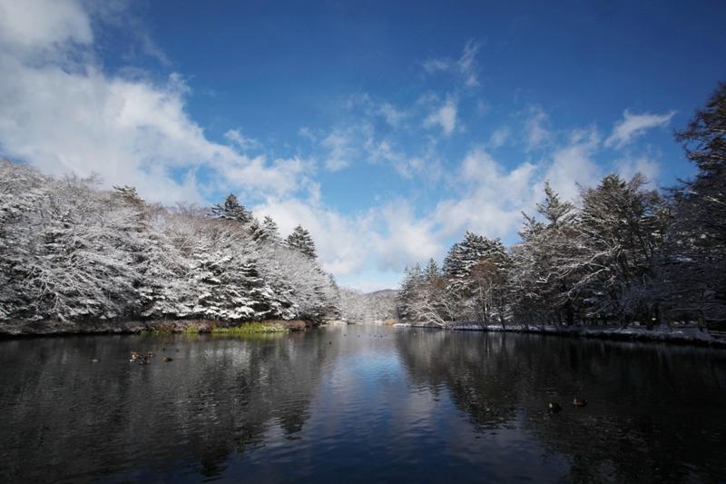 少し前の雪の写真_f0091207_23164589.jpg